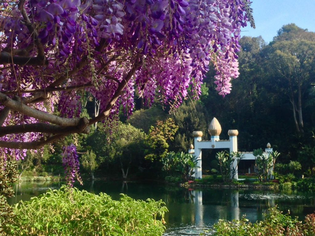 Meditation Garden at Self Realization Fellowship