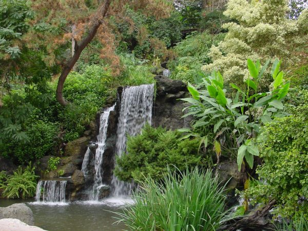 Meyerburg Waterfall at the Los Angeles Arboretum
