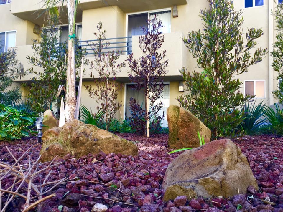 Surfwood Monterey Condominiums